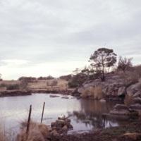 Skeleton creek.jpg