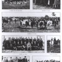 http://web02.wyndham.vic.gov.au:80/hipres/images/local_history/223.jpg