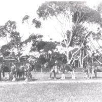 http://web02.wyndham.vic.gov.au:80/hipres/images/local_history/108.jpg