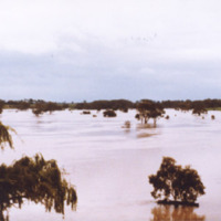 http://web02.wyndham.vic.gov.au:80/hipres/images/local_history/369.jpg
